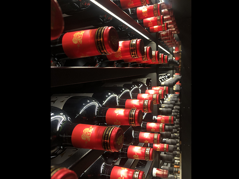 refrigerated-wine-cellars-julie's-cibin-08